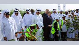 'Qatar Beautification and Our Kids Planting Trees' campaign