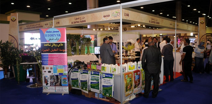 Al Safwaa Farm stand at the Qatar International Agricultural Exhibition. PICTURE: Shemeer Rasheed