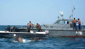 Sri Lankan naval personnel help guide elephants that were spotted struggling to stay afloat in deep