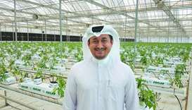 Agrico managing director Nasser Ahmed al-Khalaf at the organic hydroponics farm in Al Khor