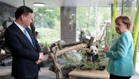 Merkel, Xi indulge in panda diplomacy ahead of G20 summit