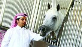 Fahad al-Marri, with an Arabian horse at Al Shaqab. PICTURE: Jayan Orma
