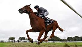 Serpentine ridden by Emmet McNamara wins the Investec Derby