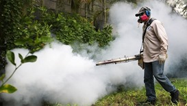 Uses a blower to spray pesticide to kill mosquitos in the Miami Beach neighborhood