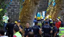 Falling tree kills 11 at religious festival in Madeira