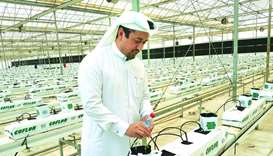Qataris urged to invest in agriculture