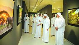 Qatari lensman's pictures on show at 'African Safari' exhibition