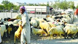 Abu Hamour livestock market sees high turnout of customers