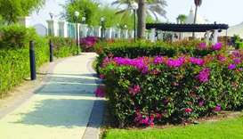 Desert garden at Al Sheehaniya set to welcome visitors