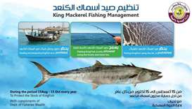 Ministry bans catching Kingfish using net