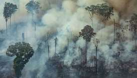 Handout aerial picture released by Greenpeace showing smoke billowing from a forest fire in the muni
