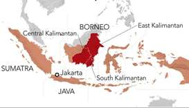 Indonesia picks eastern Borneo island for new capital