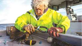 Virginia Oliver bands a lobsters' claws before she puts it in the hold as she and her son haul in lo