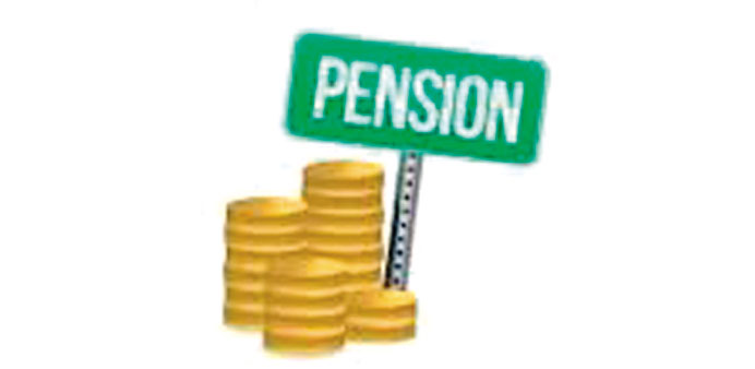 Relax pension plan rules, urges panel