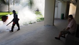 Singapore confirms 27 more Zika cases