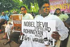 Rohingya a sensitive issue, says Congress