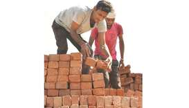 Labourers load bricks onto a tractor trolley at a brick kiln on the outskirts of Amritsar. Brick kil