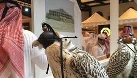 Hunting and falcon show begins at Katara