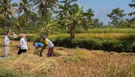 Indonesia pushes land reform