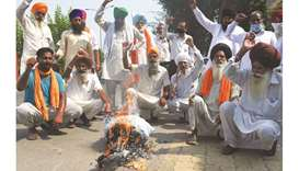 Farmers burn an effigy