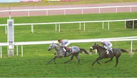 Jean-Bernard Eyquem rides Almafjar to victory at the French Arabian Breeders Challenge Sprint at Bor
