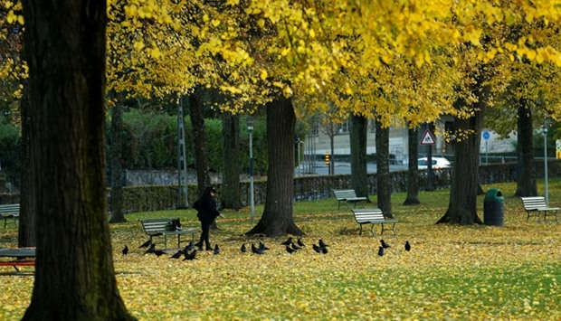 A woman feeds crows in parc in Lausane, Switzerland