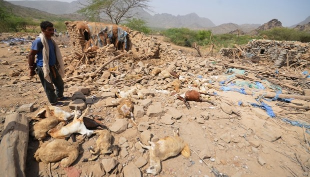 A man stands by sheep killed by Saudi-led air strikes in al-Mahweet, Yemen.