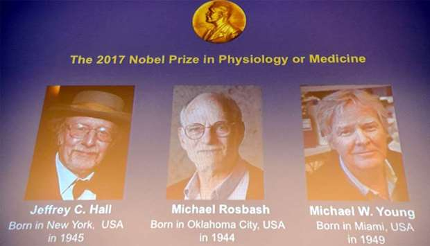 Winners of the 2017 Nobel Prize in Physiology or Medicine (L-R) US trio Jeffrey C Hall, Michael Rosb