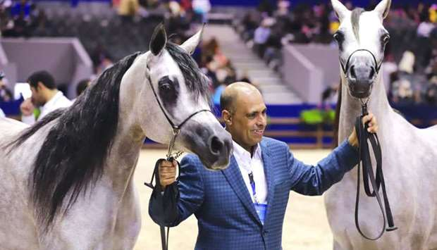 Al Shaqab's Breeding and Show manager Sheikh Hamad bin Ali al-Thani with two of the horses that won