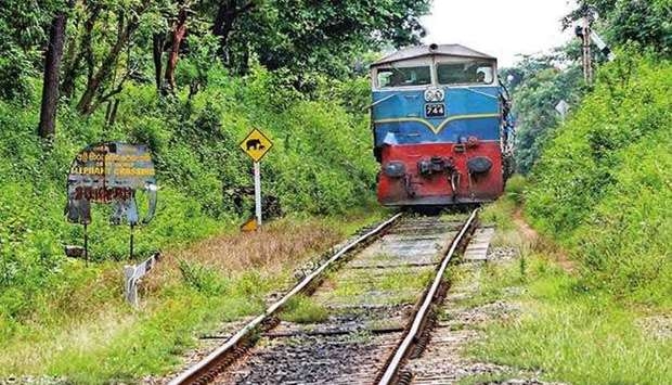 Sri Lankan rail track through forests