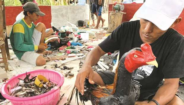 Tarjaya prepares a sculpture of a rooster made from industrial waste and chicken feathers before put