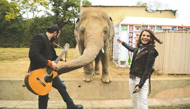 Musicians pose with Kavaan during a farewell ceremony at Islamabad's Marghazar Zoo yesterday, before