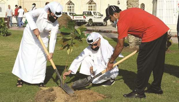 Tree planting at the Old Airport park.