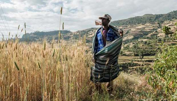 Zeleke Alabachew, farmer and militia fighter, poses in his land near the village of Tekeldengy, nort