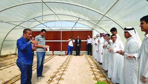 A greenhouse is installed at the Audio Complex for Boys, teaching students about agriculture, sustai