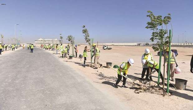 Al Khor Model School for Boys students planting trees at Al Khor Road development project.