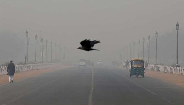 A bird flies amidst smog near India's Presidential Palace in New Delhi