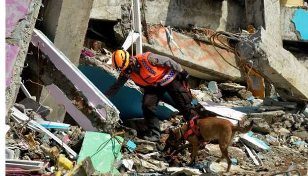 An Indonesian police officer with a K9 unit sniffer dog search for victims among the ruins of a hosp