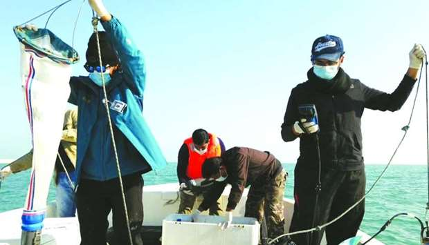 Field monitoring teams collect samples from the marine environment to analyse them.