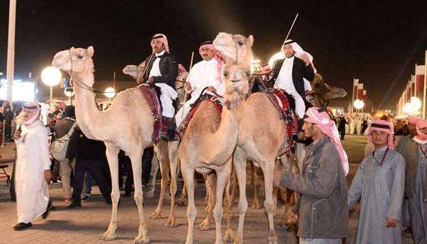The elegant camels and their riders