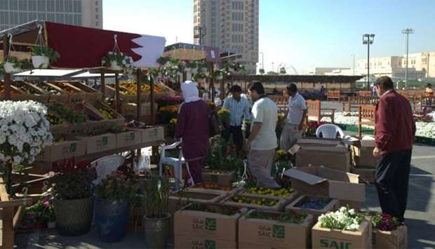 Ornamental plants attracting many shoppers