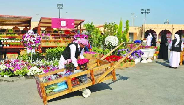 A wide variety of ornamental plants and flowers are available at Mahaseel Festival.