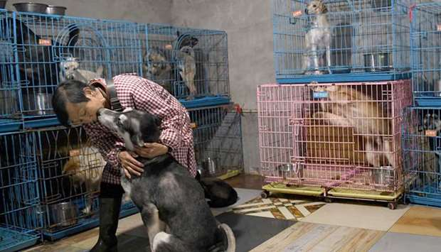 Wen Junhong petting a rescued dog inside a room with other canines at her home shared with rescued a