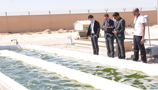 French ambassador Eric Chevallier visits the algae testing facility in Al Khor.