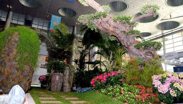 Green and natural delights from AgriteQ, EnviroteQ exhibitions. PICTURES: Thajudheen