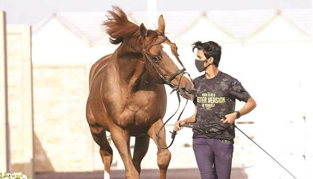 The mandatory veterinary checks for participating horses for were conducted on Thursday with the sta