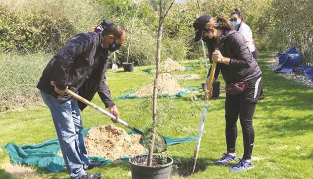 A tree planting activity.