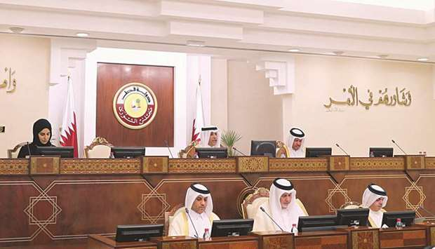 Advisory Council discusses draft law on passports