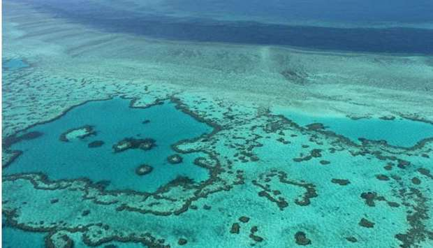 This photo taken on November 20, 2014 shows an aerial view of the Great Barrier Reef off the coast o
