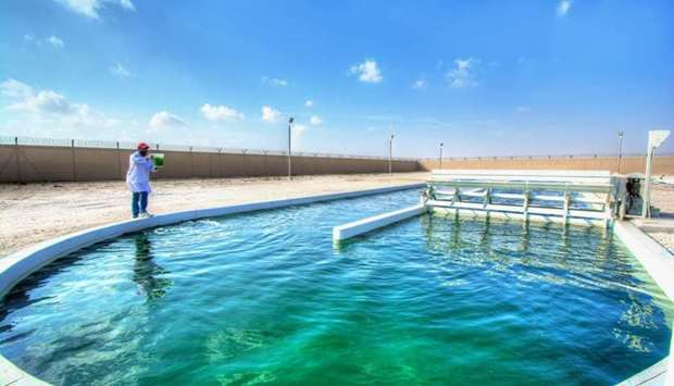 QU, ExxonMobil collaborate on enhanced water treatment research.